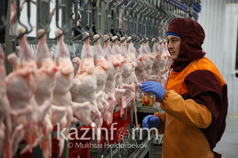President checks out West Kazakhstan poultry industry enterprises