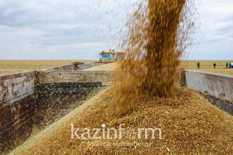 哈萨克斯坦食品合同公司今年共出口40万吨粮食