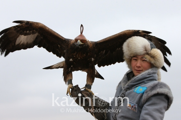 Astana hosting falconry competitions