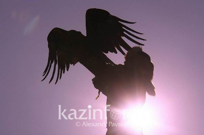 Qyran Tournament to revive falconry traditions in Kazakhstan