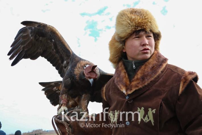 第四届国际猎鹰大赛在阿斯塔纳举行